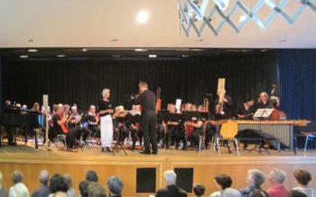 Das Blockflötenorchester bei seinem Auftritt in Gudensberg. Foto: nh