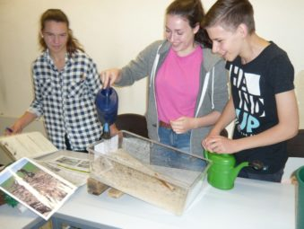 """Lena Brenzel, Nina Suchy und Lennard Rau untersuchen die Erosion verschiedener Böden in der Lernwerkstatt """"Klimawandel"""". Foto: nh"""