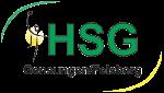 Logo HSG Gensungen/Felsberg