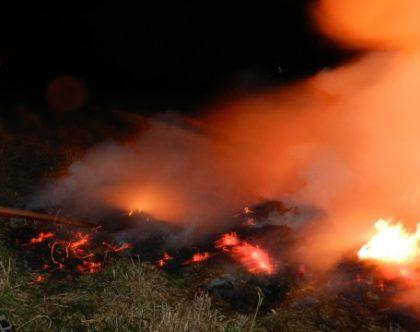 Gegen Waldbrandgefahr ist die zweithöchste Alarmstufe ausgerufen. Symbolbild: nh