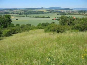 landwirtschaft130215