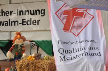fleischer130617
