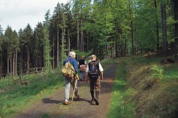 Von Beuern nach Melsungen: Geführte Wanderung am 11. Juli 2015. Foto: nh