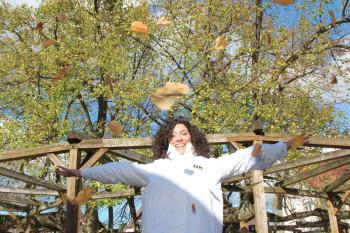 FFH-Moderatorin Evren Gezer vor dem FFH-Baum in Schenklengsfeld. Foto: FFH