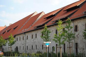 kloster-haydau131121b