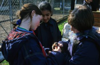 Das Umweltbildungszentrum Licherode bietet jedes Jahr für Kinder von acht bis zwölf Jahren in der ersten Osterferienwoche eine Freizeit an. Foto: nh