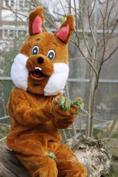 Der Osterhase kommt in den Tierpark Sababurg und verteilt 5.000 Eier. Foto: Tierpark Sababurg