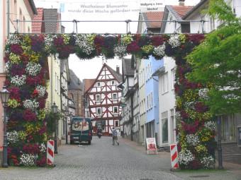 Das Westheimer Blumentor in voller Blütenpracht. Foto: Uwe Dittmer