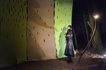 """""""Schattenwald - eine poetische Reise in den dunklen Wald"""". Foto: Lantelme"""