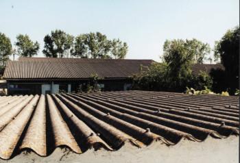 Dachbeschichtungen nutzen wenig. Foto: nh