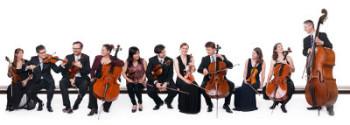 """""""Frankfurt Strings"""" eröffnen die neue Saison der hr-Kammerkonzerte. Foto: hr/Ben Knabe/Andreas Frommknecht"""