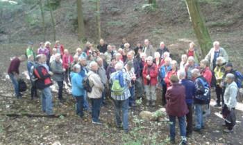 Die Wandergruppe im Wald bei Eisenach. Foto: nh