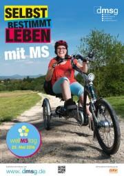 Quelle: Deutsche Multiple Sklerose Gesellschaft (DMSG)