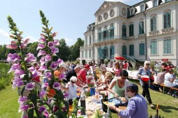 Pfingstpicknick im Park von Schloss Wilhelmsthal. Foto: Lantelme