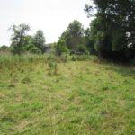 Die Weide der Schafe. Foto: Polizeipräsidium Nordhessen/obs