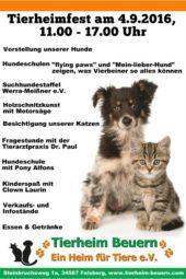 Quelle: Tierheim Beuern