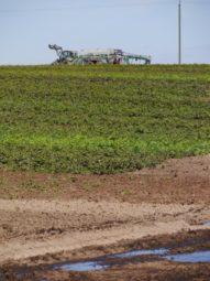 Gülle wird auf die Felder gefahren. Foto: A. Dickhaut