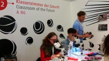 Am Mikroskop konnte man neue und 200 Jahre alte Wattenmeerproben untersuchen. Foto: nh