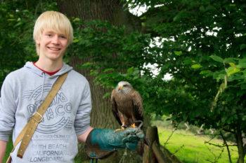 Besondere Erlebnisse verschenken: Falkner für einen Tag im Tierpark Sababurg. Foto: nh