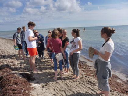 Die polnischen Jugendlichen beim Strandbesuch in Dahme. Foto: Dieter Werkmeister