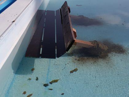 Die im Nichtschwimmerbereich des Schwimmbades liegende Bank mit Betonfundament. Foto: nh