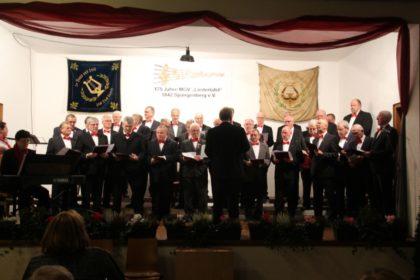 Der Jubiläumschor Liedertafel auf der Bühne. Foto: nh