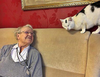 Katze Lilli im Altenheim. Foto: Guxhagener Katzenhilfe