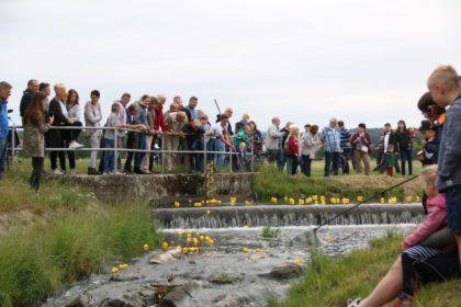 Entenrennen auf der Salatkirmes. Foto: nh