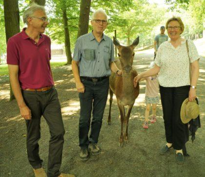 """Andreas Gründel (Kreisbeigeordneter, Grüne), Jörg Warlich, Direktkandidat (Kreistagsabgeordneter, Grüne),Rothirschkuh Agathe (Wildpark Knüll) und Dorothea Pampuch (Kreistagsabgeordnete, Grüne) (v.l.) freuen sich über das Jubiläum """"50 Jahre Naturzentrum Wildpark Knüll"""". Foto: Grüne/Warlich"""