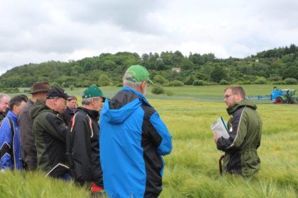 Der Klimawandel fordert Anpassungen bei den Anbaustrategien. Beim Versuchsfeldtag des LLH werden Möglichkeiten gezeigt, wie Landwirte auf die Wetterextreme reagieren können. Foto: nh