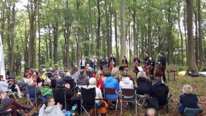 Kultursommer Waldkonzerte. Foto: nh