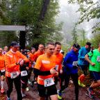 Der Startschuss für den 10. Sababurger Tierparklauf fällt am 19. August 2018. Foto: nh