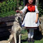 Rotkäppchen und der Wolf können den Besuchern der Rotkäppchenwoche live begegnen. Foto: nh