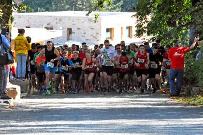 Mit einem Teilnehmerrekord startete der 10. Sababurger Tierparklauf. Foto: nh
