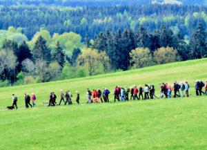 Auf Gemeinschaftswanderung. Foto: nh