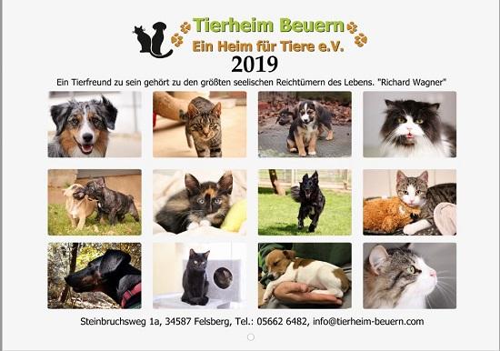 Den Foto-Kalender 2019 ist da. Für unter zehn Euro bekommt man ein hübsches Weihnachtsgeschenk und unterstützt das Tierheim Beuern. Foto: nh