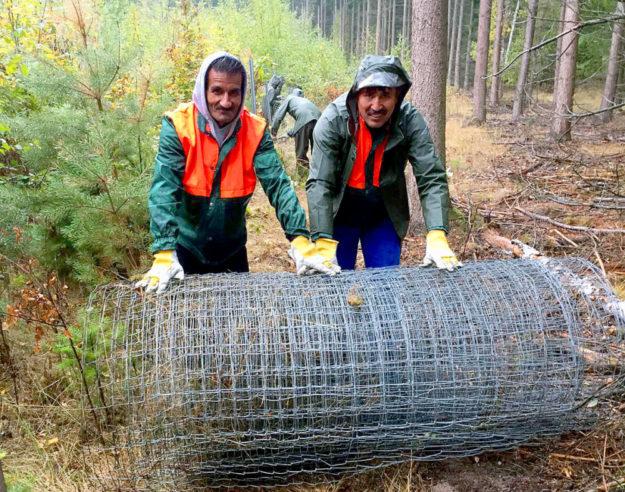 Mit viel Spaß und Begeisterung sorgten sie für Ordnung im Wald. Gholam Mohdud Hadari (re.) und Gulbudin Bazkhan (li.) nahmen am Waldprojekt teil. Foto: Jugendwerkstatt | Malteser