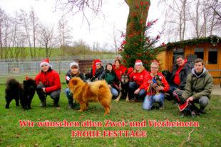 Von lebenden Geschenken rät das Tierheim Beuern ab. Wer sich Haustiere wünscht, wird aber dennoch gut beraten. Fotogruß: Tierheim Beuern