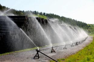 Um den Holzmarkt zu entlasten, hat HessenForst rund 170.000 Festmeter Holz in Nasslagern konserviert. Foto: F. Reinbold   HessenForst