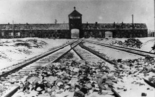 Das Einfahrtstor in das Konzentrationslager Auschwitz-Birkenau. Im Vordergrund liegen Ausrüstungsgegenstände, die Wachmannschaften vor ihrer Flucht abgelegt haben. Foto: Bundesarchiv, B 285 Bild-04413 / Stanislaw Mucha / CC-BY-SA 3.0