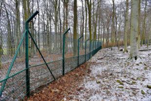 Die zusätzlichen Sicherungen am Wildparkzaun sind angebracht. Indes fehlt vom flüchtigen Wolf noch jede Spur. Foto: nh