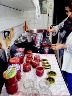Die WIR-Frauen verarbeiten die im Herbst gesammelten Wildfrüchte wie Hagebutten und Holunderbeeren zu Marmeladen und Gelees. Foto: Arbeit und Bildung e.V.