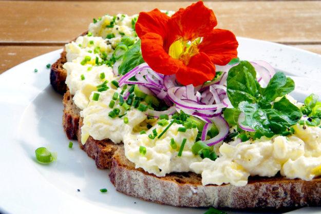 Kresse entfaltet ihren Geschmack auf dem Brot und in vielen anderen Kräutergerichten. Foto: silviarita | Pixabay