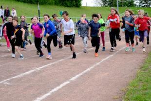 Beim Start zu den 800-Meter-Läufen konnten sich die jungen Sportler/innen bestens positionieren. Foto: Brandt