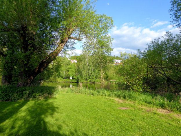 Fuldaaue bei Melsungen. Foto: Kultur- & Tourist-Information Melsungen