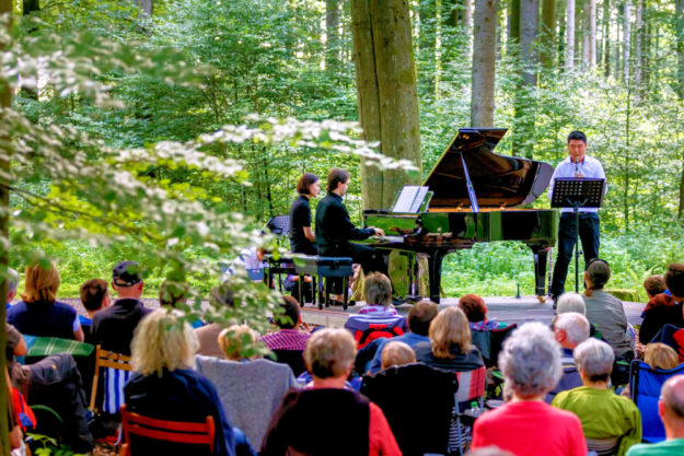 Ein Waldkonzert mit Flügel bietet die Musikakademie Louis Spohr in Kürze im Wildpark Knüll. Foto: Heiko Meyer