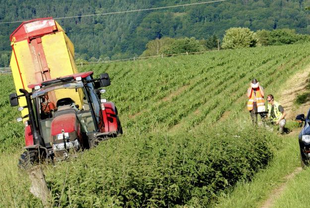 Um während der Feldarbeit Unfälle mit Tieren zu vermeiden, spürte eine Drohne auf, was sich im »Unterholz« verbarg. Foto: LLH