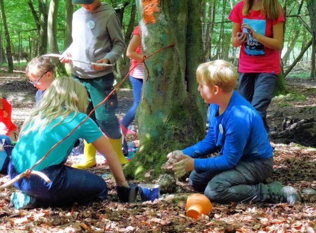 Rasch anmelden: »Wild & Wald« ist das Motto der Sommerferien im Wildpark Knüll. Foto: Wildpark Knüll