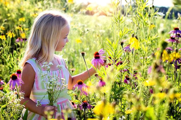 Blühflächen sind hübsch anzusehen und dienen zudem einem wichtigen ökologischen Zweck. Foto: nh