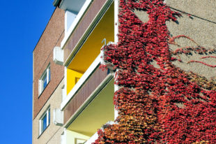 Den Neubau oder Kauf selbst genutzten Wohnraumes fördert das Land Hessen über WIBank-Darlehen. Foto: myimmo | Pixabay